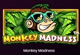 Monkey Madness